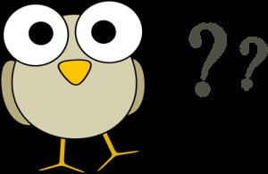 Quel est donc cet oiseau ?